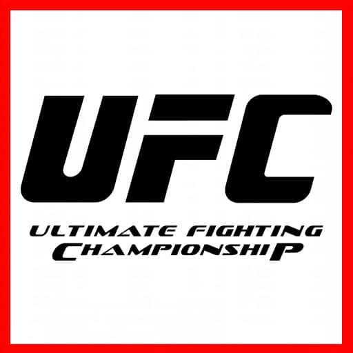 ufc-fight-la